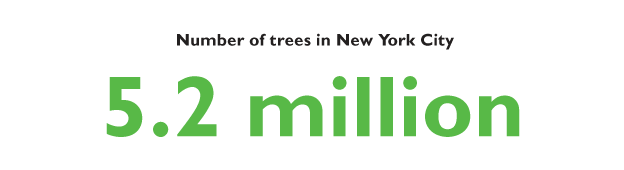 Number of trees in New York City: 5.2 million