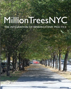 MillionTreesNYC: The Integration of Research and Practice