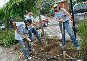 NYRP and America Express Serve2Gether