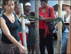 Street Tree Care Training