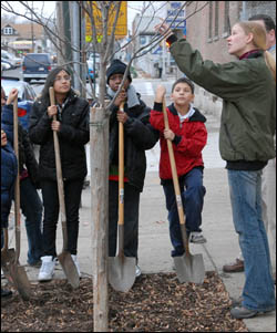 Students from the Cromwell Recreation Center Afterschool program get a hands-on lesson in planting trees.