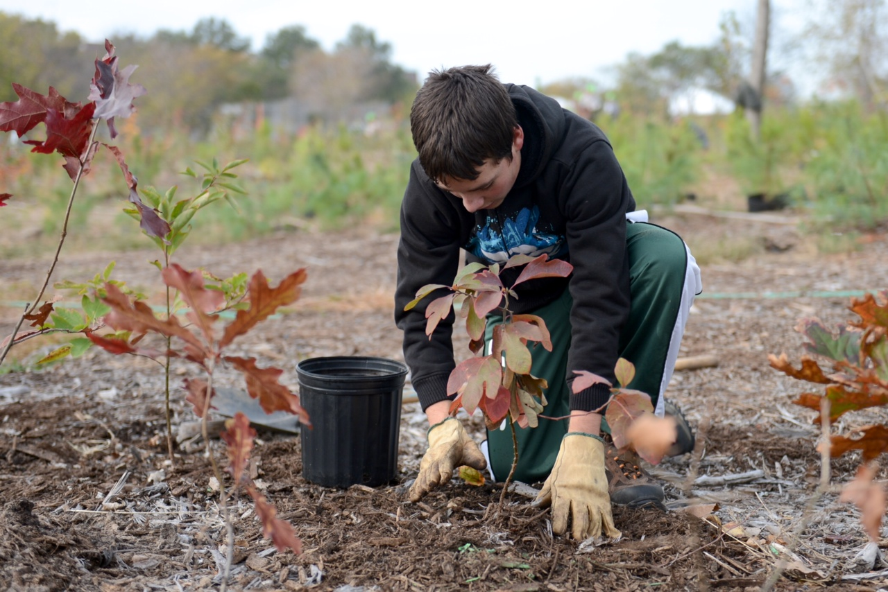 Volunteer planting in Rockaway Community Park